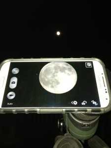 telescope phone mount