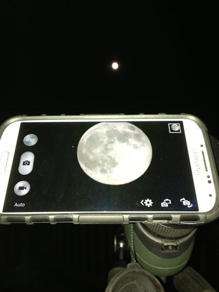 Telescope phone mount adapter