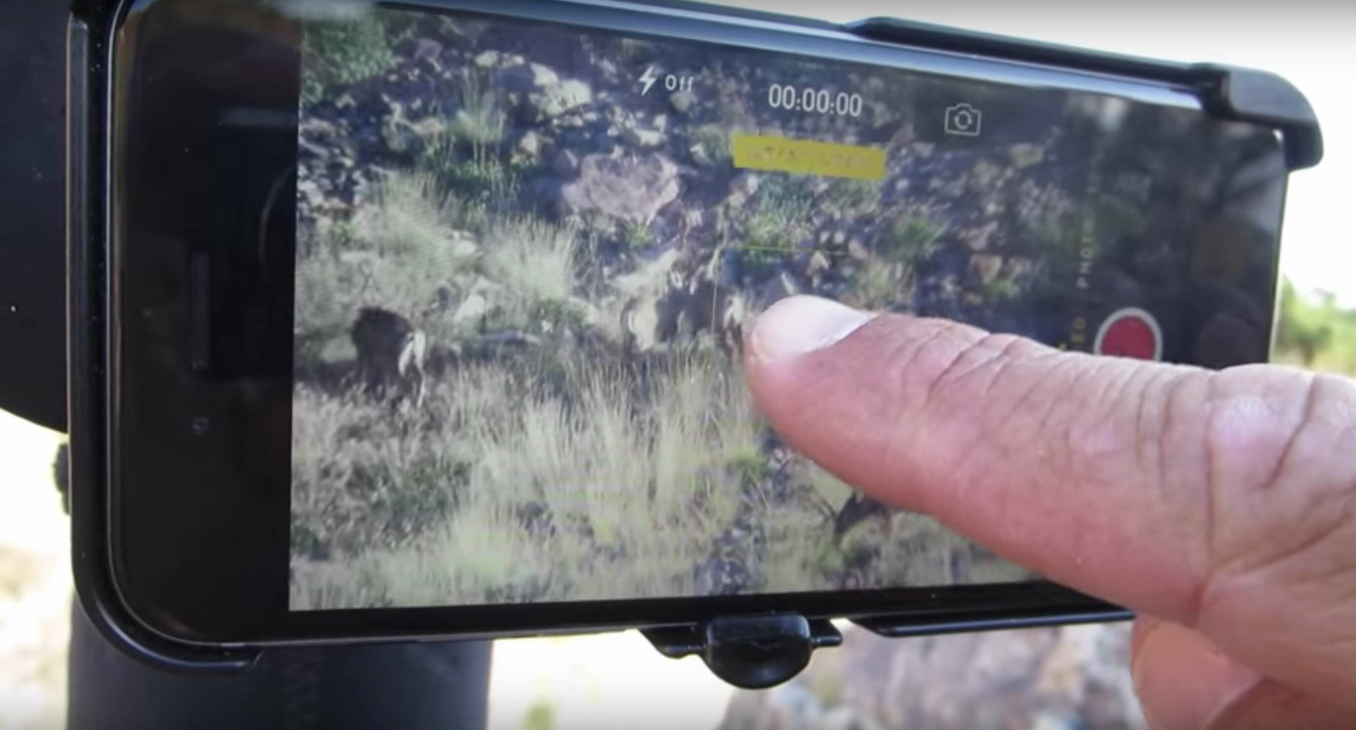 Phone Skope Digiscoping Tips - Using Autofocus
