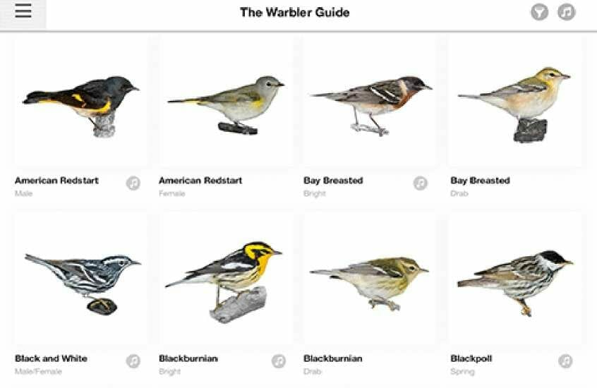 Phoneskope Warbler Bird Spotting Guide