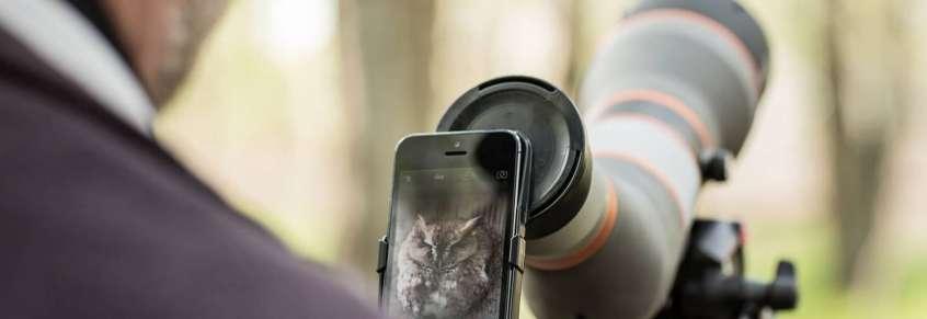 Phoneskope how to digiscope for birds