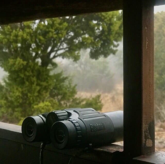 Great Budget Digiscoping-binoculars