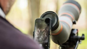 Birding with Phone Skope Digiscope Adapter
