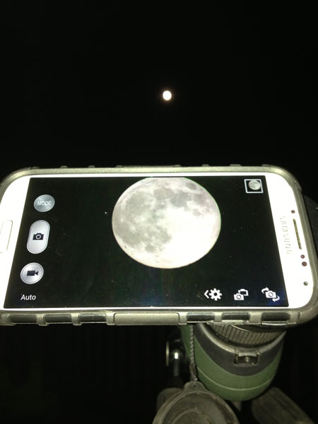 Telescope phone mount adapter