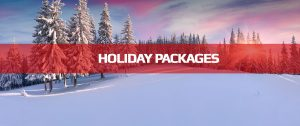 Phone Skope Holiday Gift Packages