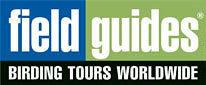 Field Guides Birding Tours Worldwide