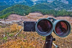 Digiscoping with Binoculars