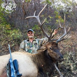 Hunting elk giveaway