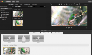 Video editing with digiscope