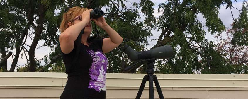 Binocular and Scope spotting