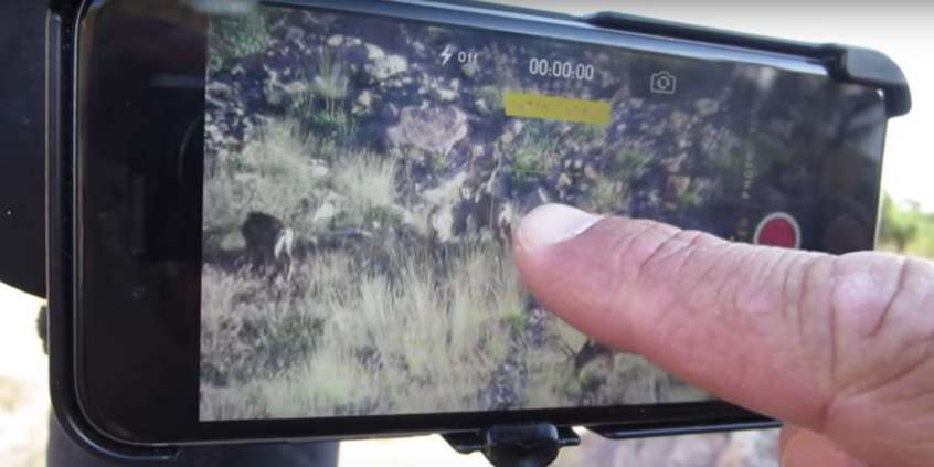 Tips for Digiscoping with PhoneSkope