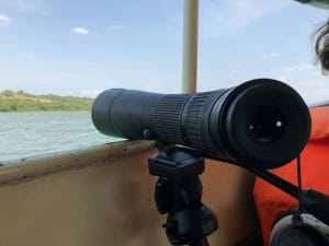 Digiscoping from the boat