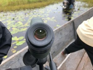 Digiscoping on the hunt