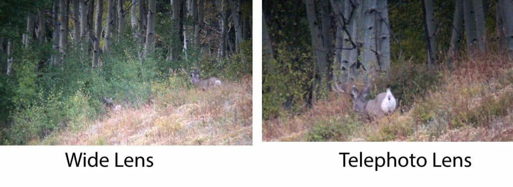 Dual Lens smartphone camera comparison